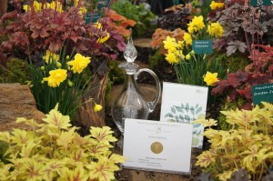 Plantagogo Best in Floral marquee 2012