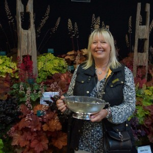 Harrogate Autumn Flower Show Plantagogo won a silver rose bowl for our fabulous Heuchera, Heucherella & Tiarella