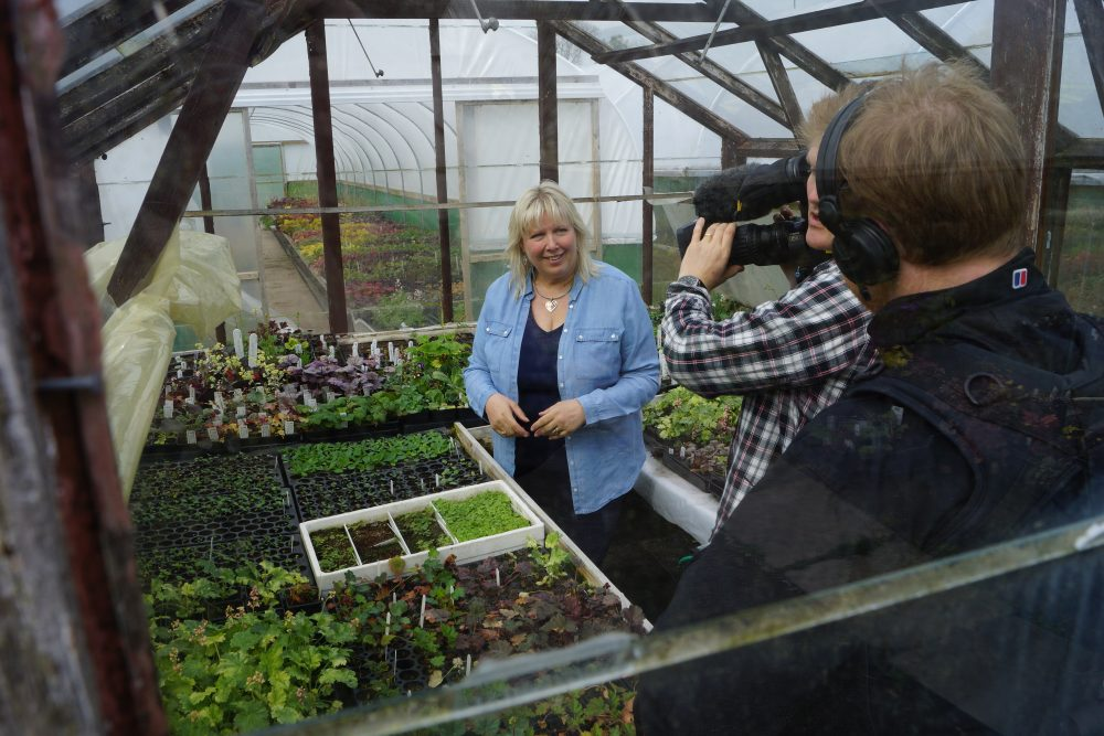 cameras in the small propagation house