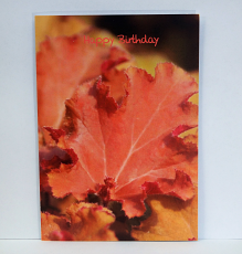 Happy Birthday 'Tangerine Wave' Card