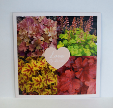 Love My Garden Card