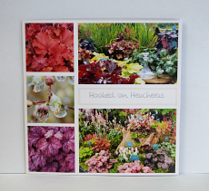 Hooked on Heucheras Card
