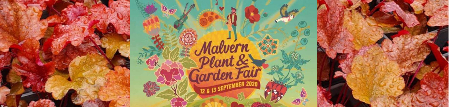 Malvern Autumn show is happening!