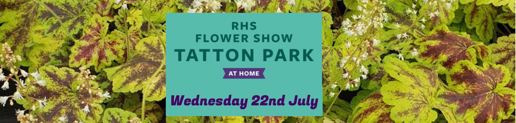 Join us at Tatton Park at Home!