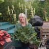 Vicky carrying Heuchera Thomas at Chelsea