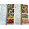 Catalogue for Plantagogo Heucheras
