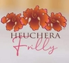 Heuchera 'Frilly' is so special she has her own logo!